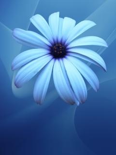 Ненавязчивые сине-голубые обои для рабочего стола Нокиа 2700