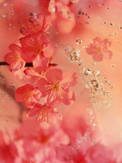 Симпатичная розовая абстракция украсит экран вашего нокиа 2700